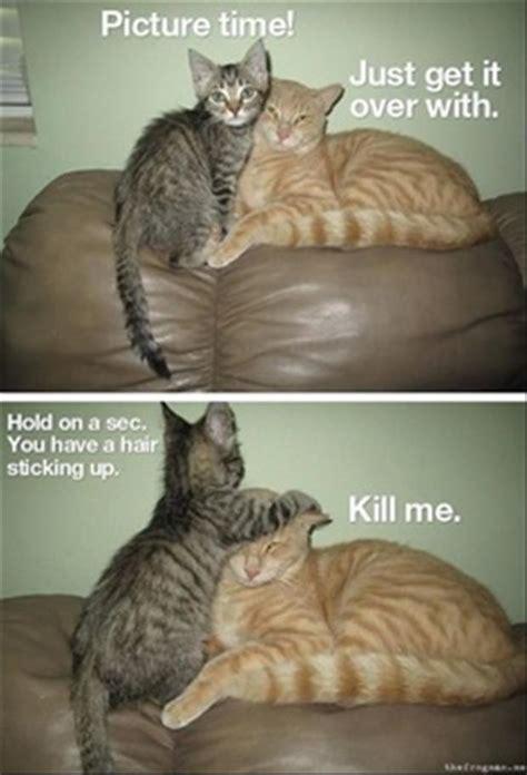 beware  animals  funny captions  pics