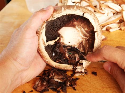 knife skills how to clean shiitake portobello and