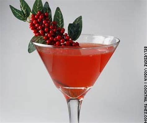 martini mistletoe best of 2009 top 10 cocktails around the world