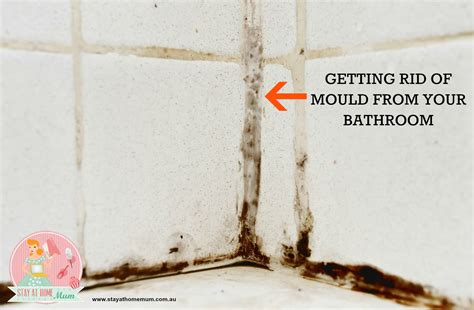 rid  mould   bathroom stay  home mum
