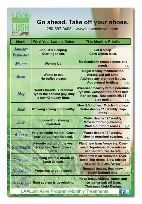 Lawn Care Calendar Lawn Care Calendar Www Lushecolawns For The Home