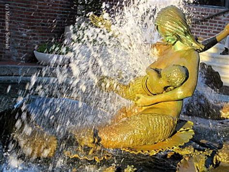 san franciscos mermaids