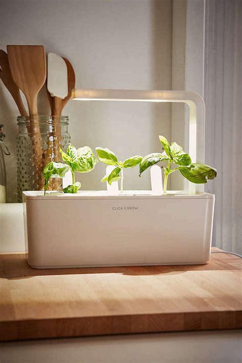 click  grow  miniature herb garden   kitchen