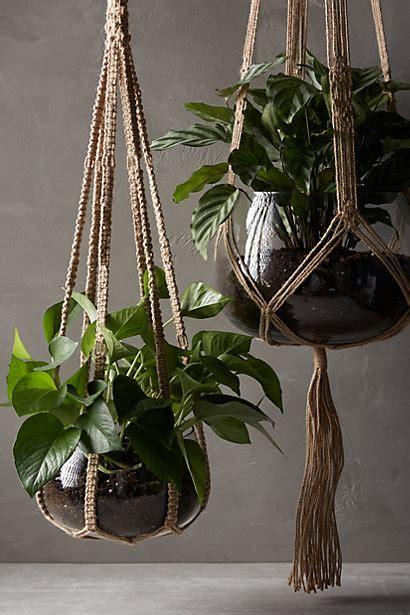 Hangers For Plants - macrame plant hangers macrame plant hangers plant