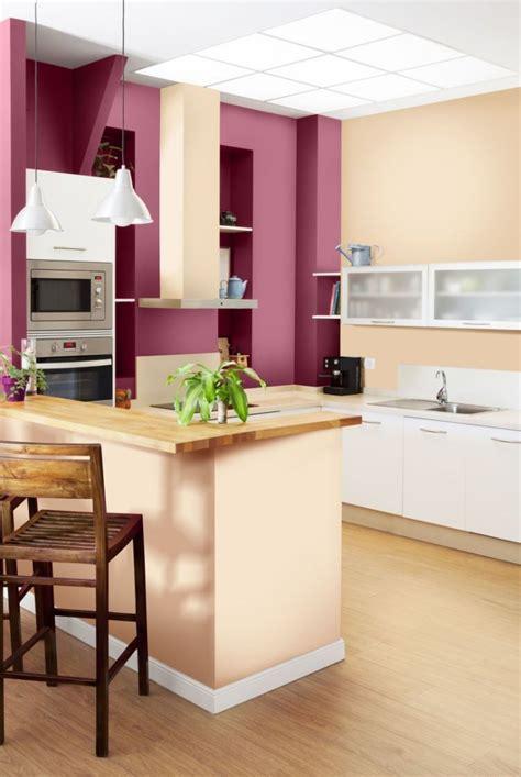 Délicieux Rideaux Pour Cuisine Moderne #5: peinture-murale-couleur-rose-fuchsia-cuisine.jpg