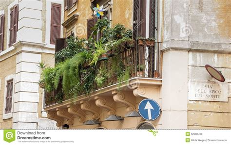 flieder für balkon balkon mini idee