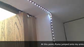 led strip lights with dimmer youtube