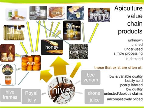 Taking stock & projecting apiculture value chains into the ... Royal Jelly Benefits