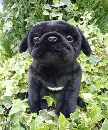 black pug soft corfe bears gt faithful friends gt pug soft black 30 5cm