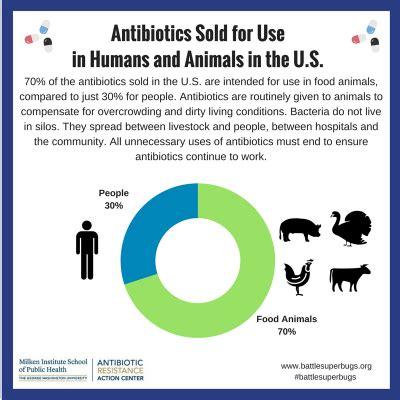 amoxicillin vs human amoxicillin what is antibiotic resistance antibiotic resistance center