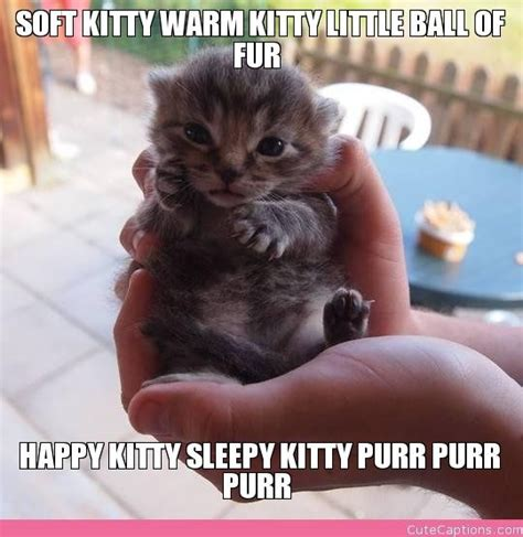 Soft Kitty Meme - 15 best images about soft kitty warm kitty on