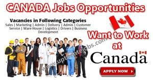Mba Requirements Need Work Experience Canada by Openings In Canada Canada In All Sectors