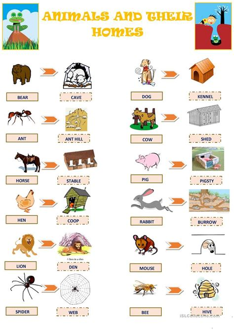 printable animal homes animals and their homes worksheet free esl printable