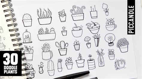 how to use doodle on 30 plants to doodle succulents cacti and more