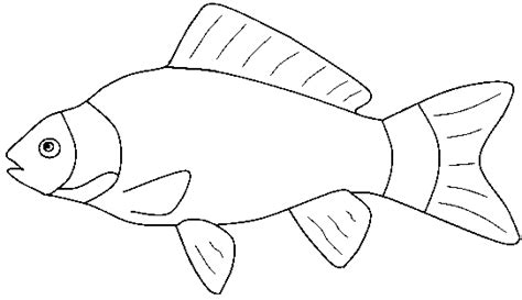 coloring pages of saltwater fish marine fish clipart fish coloring pencil and in color
