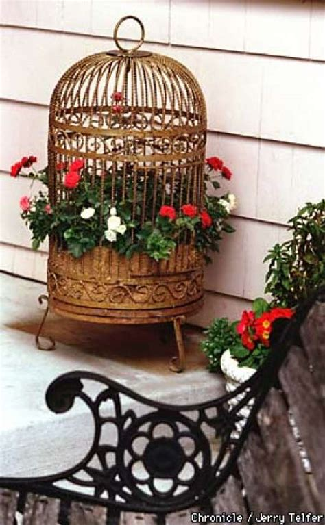 Bird Cage Planters by The Begonia In The Gilded Cage Bird Cages Make