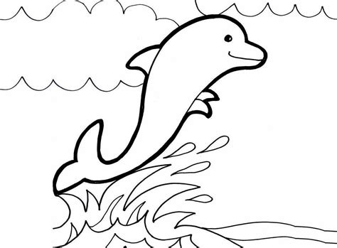 free coloring pages of dolphins advanced
