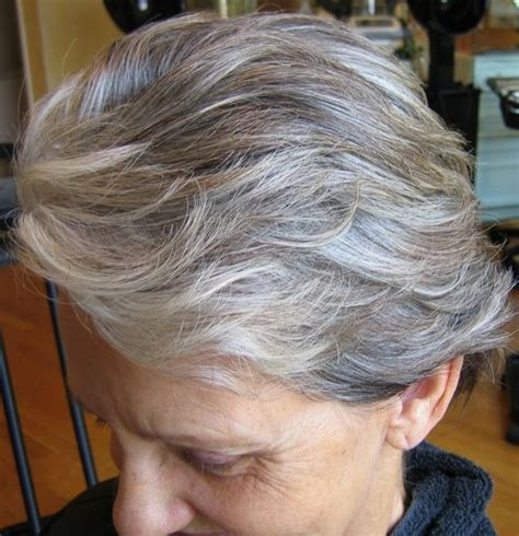 pictures of gray hair with dark lowlights adding lowlights to gray hair newhairstylesformen2014 com