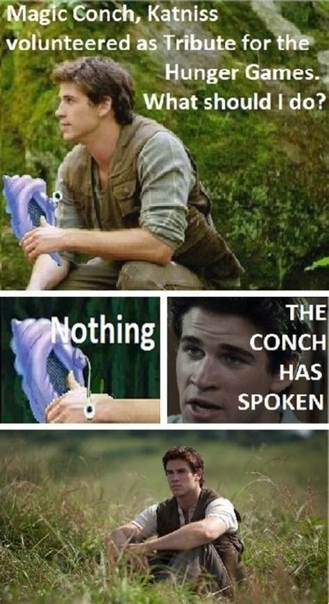 Funny Hunger Games Memes - the hunger games