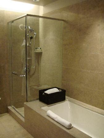 Bathtubs Chicago by Bathtub And Shower Picture Of International Hotel Tower Chicago Chicago Tripadvisor