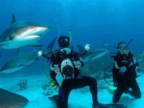 disney cruise line wedding – Destination Wedding Photography   Graycliff Hotel & Royal Caribbean Cruise, Bahamas