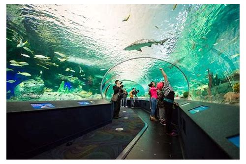 ripley's aquarium coupon code toronto