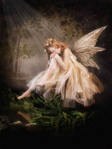 magical kingdom  fairies images  pinterest