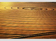 Free Images : sand, light, wood, sun, texture, leaf, floor ... Light Wood Flooring