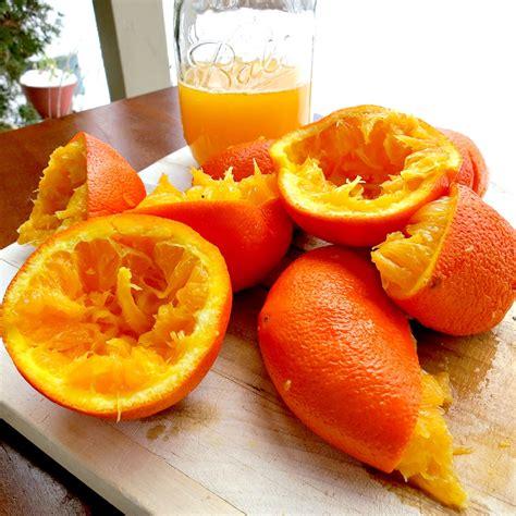 Orange Squeeze orange squeezer machine reviews maker squeezer