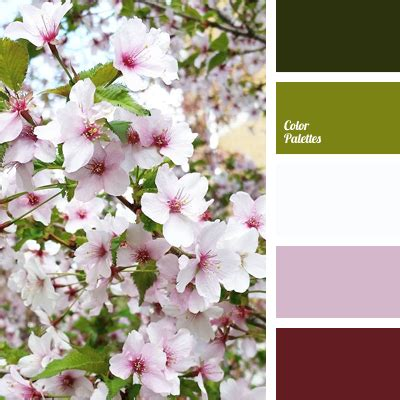 cherry blossom color color of cherry blossom color palette ideas