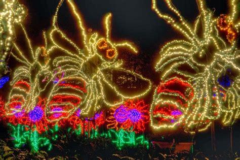 Gorgeous Holiday Lights At Atlanta Botanical Gardens Gac Atlanta Botanical Garden Light Show