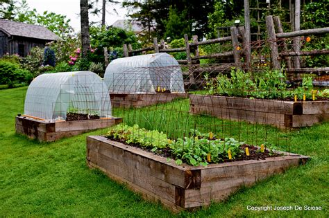 How to Grow Vegetables All Year Long (Even in Winter!)