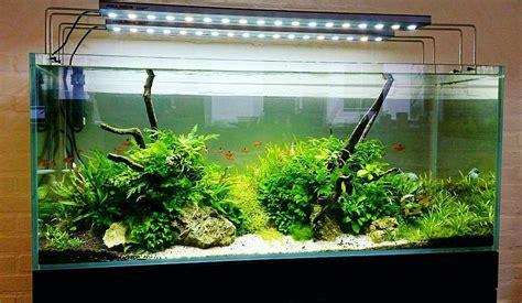 gambar jual aquarium mini harga murah recomended seller