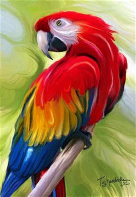 1000+ images about parrots on pinterest | scarlet, parrot