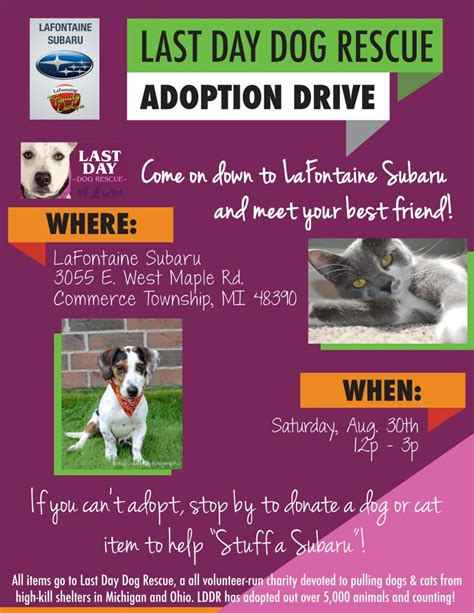 last day rescue last day rescue august adoption drive at lafontaine subaru via lafontaineauto