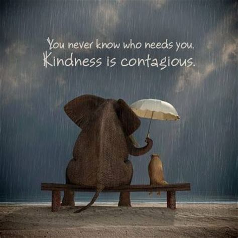 Kindness Is Contagious Quotes kindness is contagious quotes and sayings