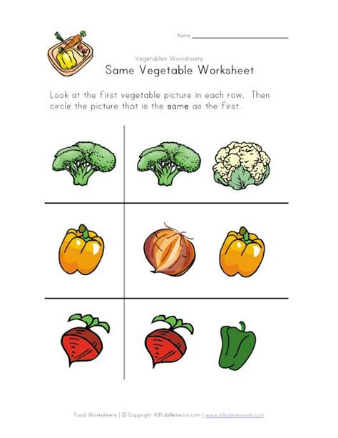 worksheets for preschoolers on fruits and vegetables fruit and vegetable worksheets newhairstylesformen2014 com