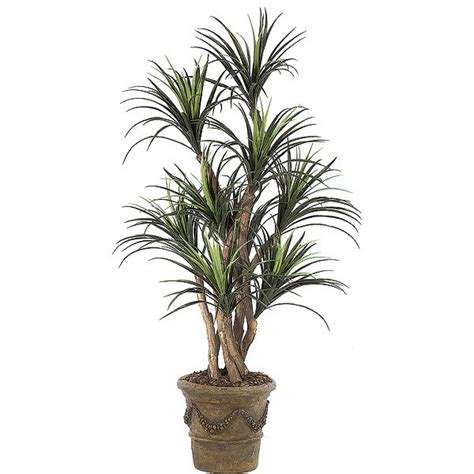 outdoor potted trees 5 foot artificial outdoor liriope tree potted w 1800