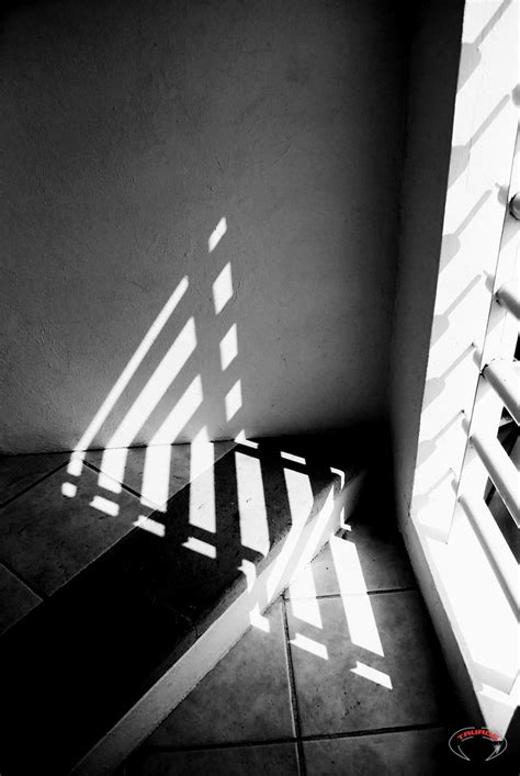 Shadow And Light 30 Best Images About Studies In Light On Pinterest