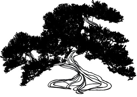 broom tree coloring page elijah on mount carmel coloring pages