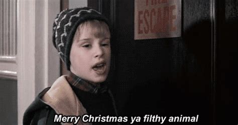 home  merry christmas  filthy animal  quote flickr