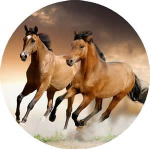 cialda cavalli soli 4 49 decorazioniperdolci