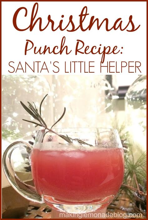 easiest christmas punch