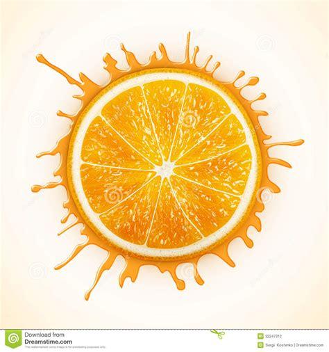 fresh orange  splash stock vector image  acid
