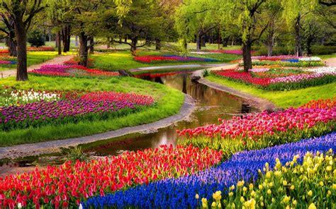 Creer Un Jardin Fleuri Toute L ée by 201 Laborer Un Jardin Fleuri Et Gourmand Au Pied De Votre