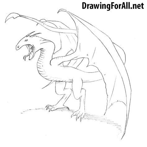 How To Draw A Drawingforall by How To Draw A Wyvern Drawingforall Net