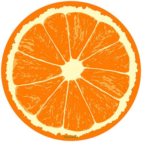 Wall Mural Printing orange fruit slice citrus kitchen wall decal removable