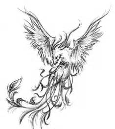 phoenix tattoo design for everybody real photo pictures