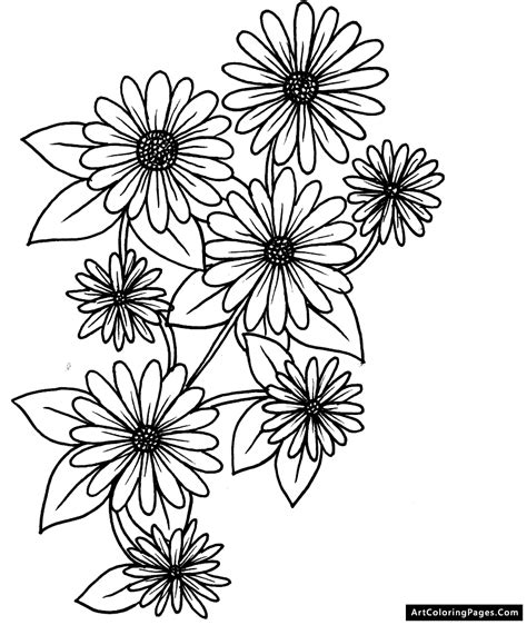 coloring page daisy flower daisy flower coloring pages for kids vitlt com