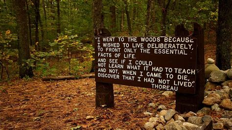 walden pond book summary book review walden by thoreau berkun